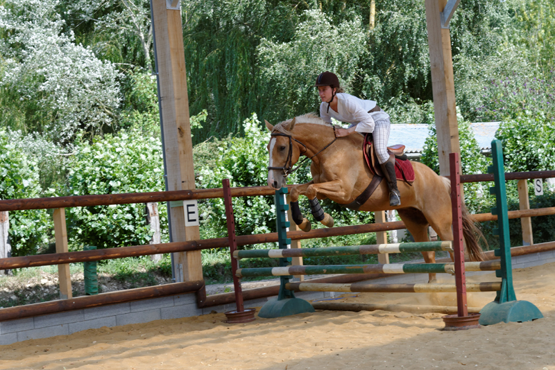 copyright:©centre_equestre_Montmirel (3)red