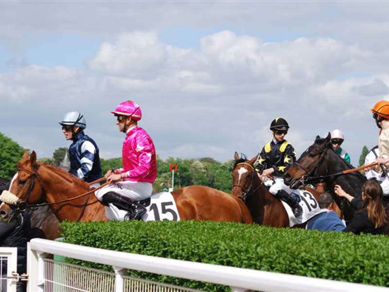 Courses hippiques - Haras national du Pin