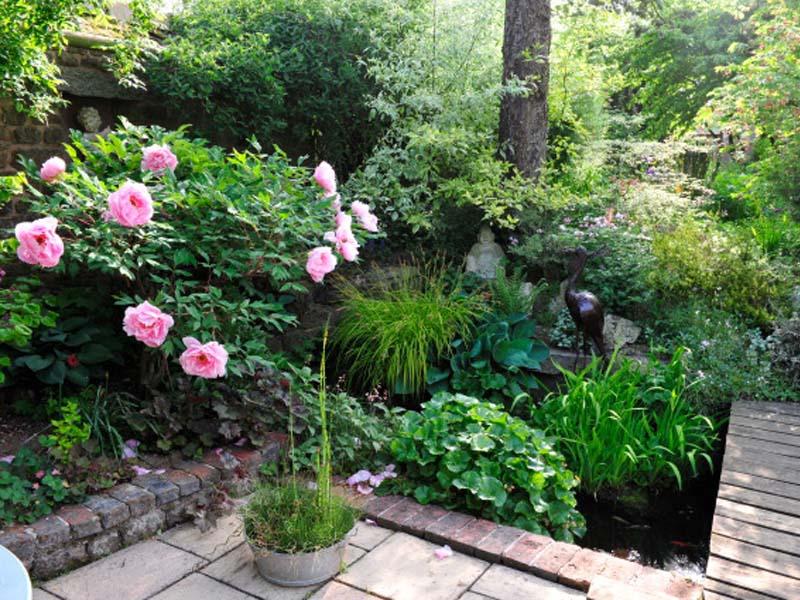 le jardin du ridrel la fert mac en normandie cdt de l 39 orne